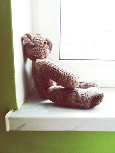 Indoors  Window Childhood Home Interior No People Close-up Day Bear