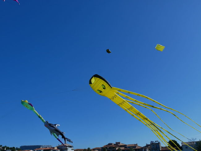 Paint The Town Yellow Blue Cerf Volant Day Low Angle View No People Outdoors Sky Colour Your Horizn
