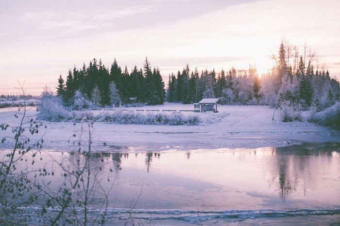 Cold Winter ❄⛄ Russia россия Whiteday снег❄