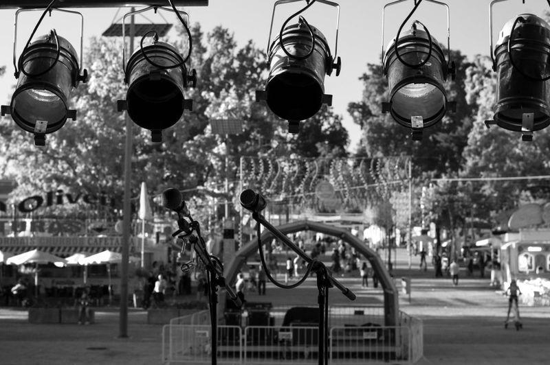 Carousel in amusement park