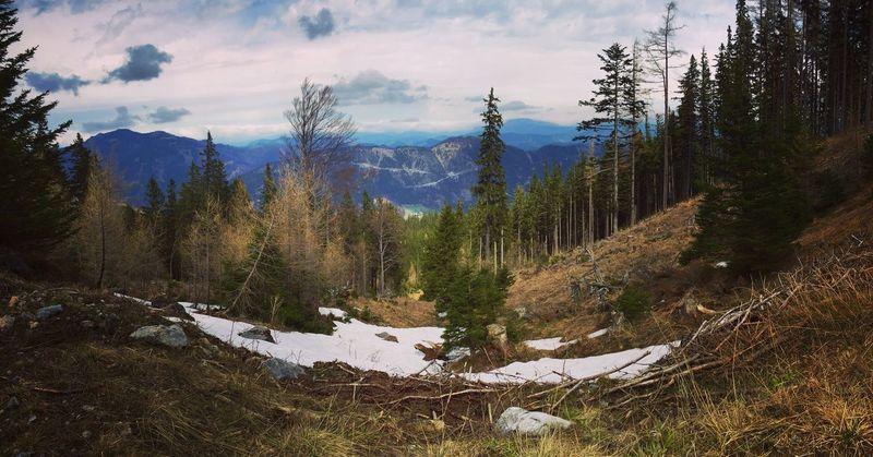Mountain Schneeberg VSCO Austria Adventure Enjoying Life Taking Photos Followme