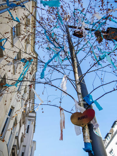 #urbanana: The Urban Playground Architecture Available Light Blue Branch Building Building Exterior Built Structure Cherry Blossom City Clear Sky Day Decoration Flower Hanging Low Angle View Maibaum Multi Colored Nature No People Outdoors Plant Sky Streetphotography Tree