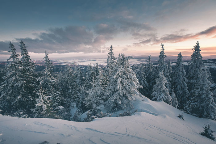 Beauty In Nature Cloud - Sky Cold Temperature Covering Environment Idyllic Mountain Nature No People Non-urban Scene Plant Range Scenics - Nature Sky Snow Snowcapped Mountain Sunset Tranquil Scene Tranquility Tree Winter