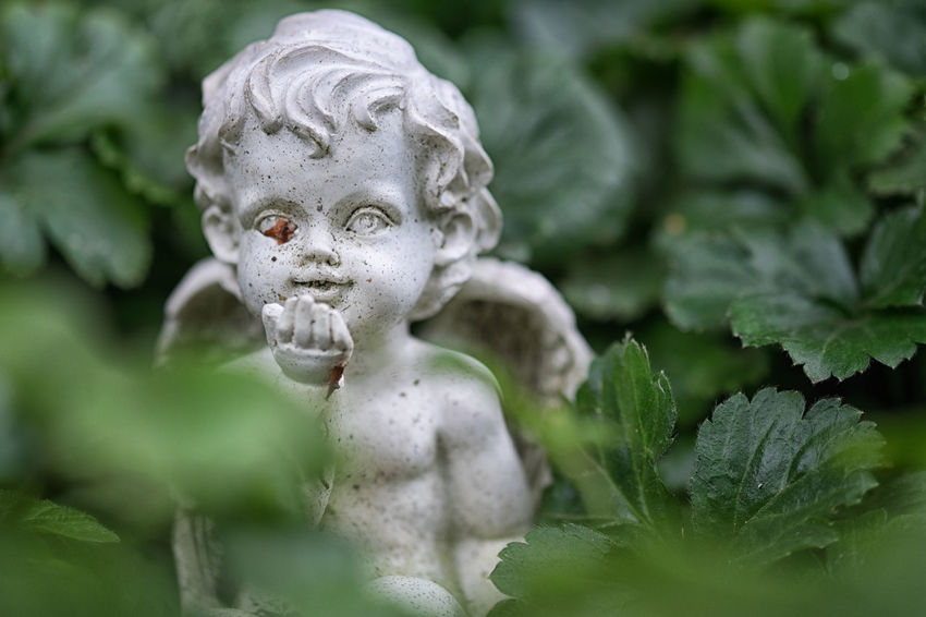 Cemetery Child Close-up Day Death Human Representation No People Outdoors Putto Putto Statue Sculpture Statue