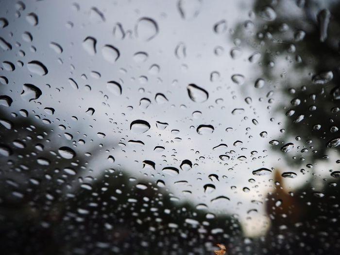 Water RainDrop
