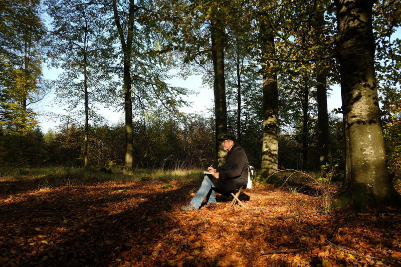 Person sketching in nature, autumn beech forest,nature diary Sketching In Nature Adventure Autumn Forest Beech Forest Forest Diary Keeping A Diary Nature Nature Diary Observing Nature One Man Only One Person Outdoor Pursuit Outdoors Plein Air Real People Relaxation Tree