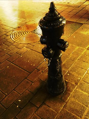 Hydrant Golden Ground Rainy Days☔ Colors Are My Life😍 Golden Color For My Friends 😍😘🎁 Austriaholidays Tranquility City Impressions