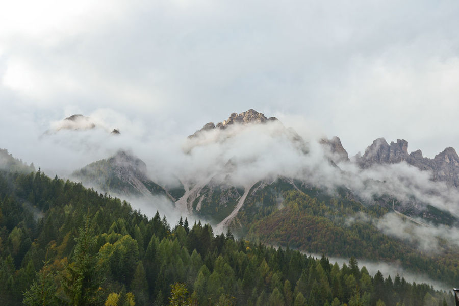 Afventure Beautiful Beauty In Nature Cloud - Sky Clouds Cloudy Cortina D'Ampezzo Dolomites, Italy Dolomiti Forest Forrest Green Hi Hiking Italy Landscape Mountain Mountain Range Mountains Nature Pinaceae Pine Tree Pine Woodland Sky Tree Miles Away The Great Outdoors - 2017 EyeEm Awards