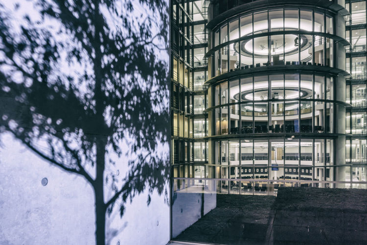 Shadow of tree projected by floodlight on pillar of Paul-Loebe-Haus at night in Berlin, Germany Architecture Berlin Building Exterior Built Structure Color Image Floodlight Germany🇩🇪 Horizontal Night No People Outdoors Paul-Loebe-Haus Paul-Löbe-Haus Photography Projected Shadow Tree