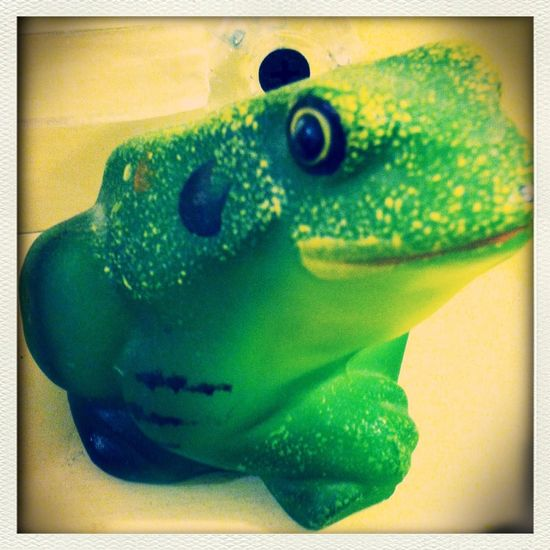 Sting filter Fenton Glass Collection Knick Knacks Froggy Style