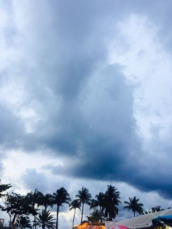Tree Silhouette Storm Cloud City Sky Cloud - Sky Lightning Power In Nature Tropical Tree Coconut Sky Only Dramatic Sky