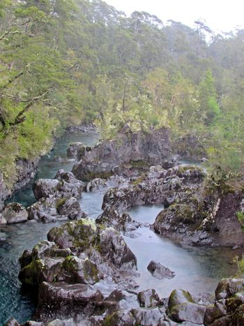 Holiday Vacations EyeEm Best Shots EyeEm Gallery Tourism Landscape_Collection Streamzoofamily Chile Southamerica Wild Nature Saltos Del Petrohue River Landscape River Water Nature Outdoors Rock - Object No People Scenics Tree Forest Beauty In Nature Beauty
