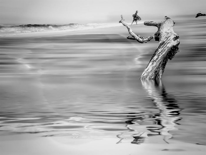 Digital composite image of drift wood in water and surfer at beach