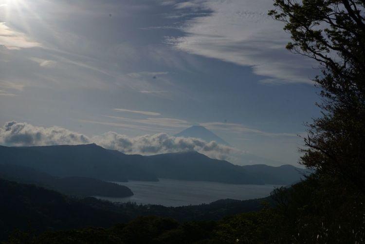 Mt.Fuji from Mt.Taikan Ashino Lake Mt.Fuji Cloud - Sky Sky Beauty In Nature Mountain Tree Tranquility Tranquil Scene Day Outdoors Nature Mountain Range No People
