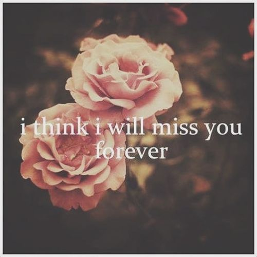 Why I Just Miss You...
