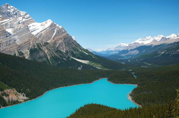 Banff National Park  Breathtaking Canadian Rockies  Clear Blue Sky Hiking Peyto Lake Travel Turquoise Colored Blue Green Water Destination Glacial Lake Lake At The Foot Of A Mountain Mountain Mountain Range Snowcapped Mountain
