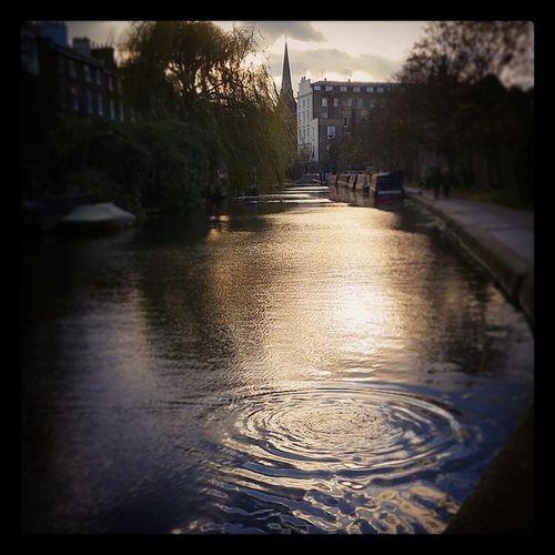 Duck just ducked under.... London Camden Camdenlock Canal Sunset Sunsets Canalsunsets Londonsunset Sunsetlovers Sunsetlondon Sunsetslondontown Londontownsunsets