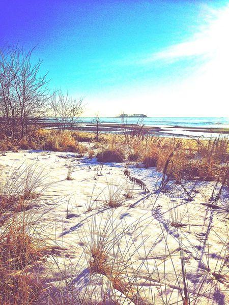 USA Walnut Beach Milford Sound Milford CT Ct Connecticut New England  Sun Sun Reflection On Water January 2016 Winter Snow Wintertime