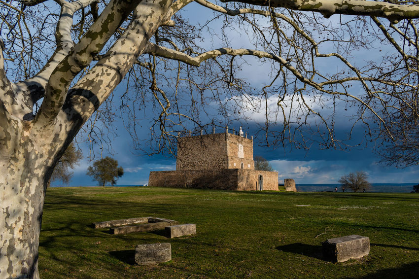 Castle of Abrantes Portugal Ancient Ancient Civilization Architecture Bare Tree Building Exterior Built Structure Castle Cemetery Damaged Day Grass Gravestone History Memorial Nature No People Old Ruin Outdoors Place Of Worship Sky The Past Tree
