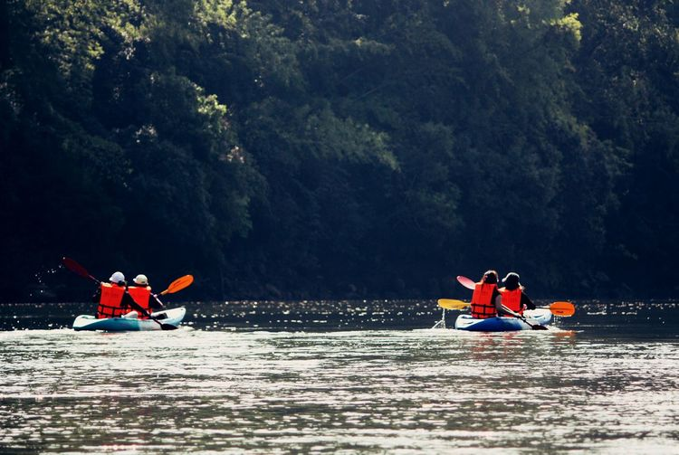 Rear view of people kayaking in river at forest