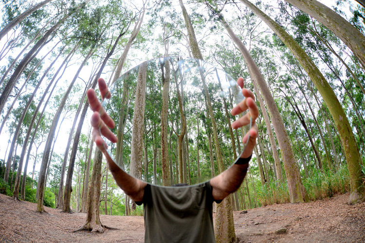 Low angle view of man hands in forest
