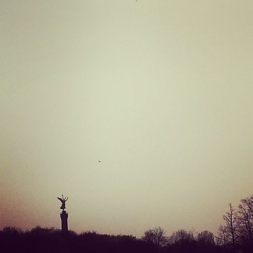 come birdy birdy... Berlin Goldelse Siegess äule