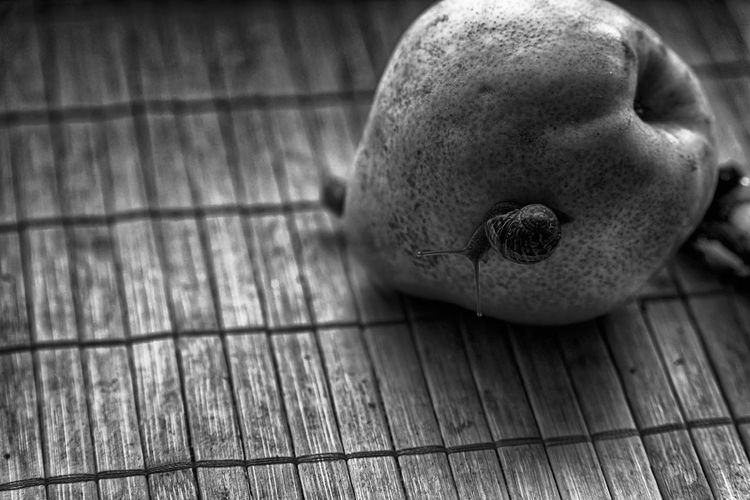 Business Composition Snail Animal Art Backgrounds Close-up Day Design Element Flooring Focus On Foreground Food Food And Drink Freshness Fruit Hardwood Floor High Angle View Ideas Indoors  Monochrome No People Representation Selective Focus Single Object Snail Collection Snail Photography Snail ❤ Snails Snailshell Snail🐌 Still Life Table Wallapper Wellbeing Wood Wood - Material