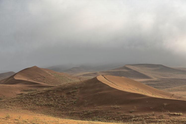 1133 early morning-misty light over the sand dunes of the badain jaran desert. inner mongolia-china.