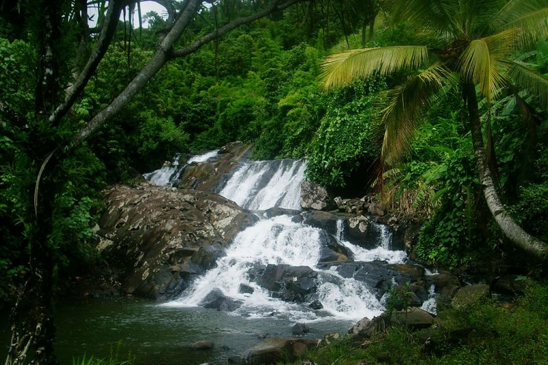 that was few years ago, Madagascar  Ste Marie Nature_collectionlittle Waterfall Souvenirs