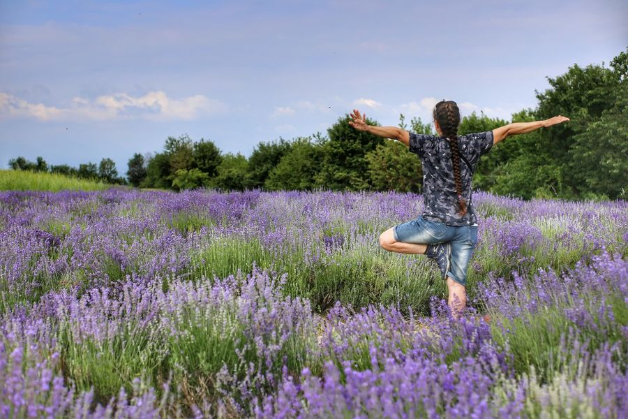 Yoga In Nature Relaxing Relax Yoga Green Lavander Lavanderfields Flower Young Women Women Agriculture Working Purple Field Mature Women Lavender Arms Outstretched Cultivated Land Meditating Exercise Mat Plantation Fitness Yoga Studio Lotus Position Agricultural Field Farmland Yoga Class