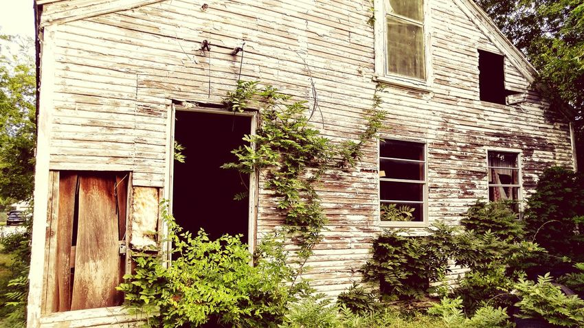 Nature On Your Doorstep Decrepit Beauty In Decay Abandoned House