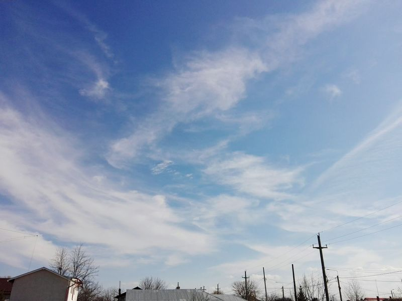 Cloud - Sky Sky Blue Low Angle View No People Tree Outdoors Nature Day Blue Sky White Clouds Blue Sky And White Clouds Blue Sky Blue Sky And Clouds Eyeem Market Showcase: 2017 Huaweiphotography On Market @WOLFZUACHiV Showcase: March Wolfzuachiv Edited By @wolfzuachis EyeEmNewHere