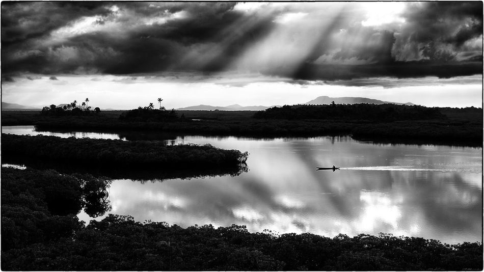 View to the biggest swamp of the Philippines at Siargao Island Blackandwhite Eyemphilippines Landscape Landscape_photography Landscape_Collection Mangrove Mangrove Forest Mangrove Plant Mangrove Swamp Nature