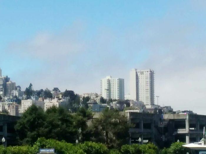 City Life!