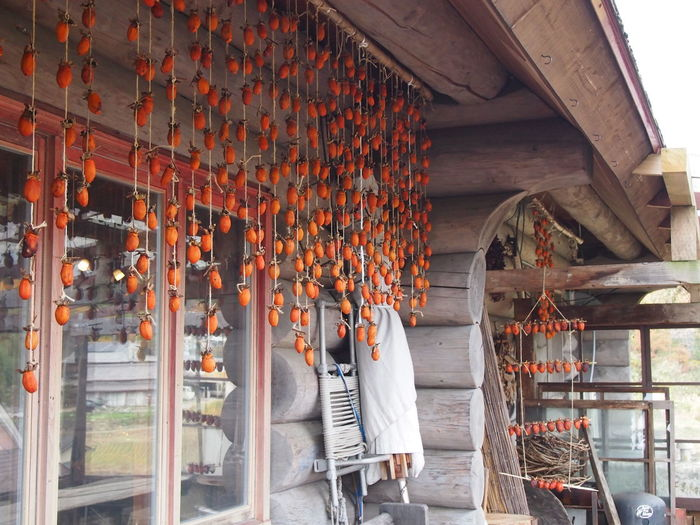Hanging Persimmon Dried Persimmon Autumun Log House Orange Color Eaves