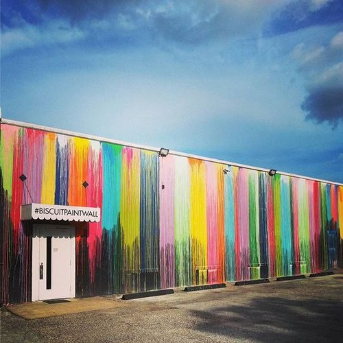 Biscuitpaintwall Houston Texas Montrose Gayborhood Rainbow Urbanjungle Mural Art Streetart Westheimer Summer2015