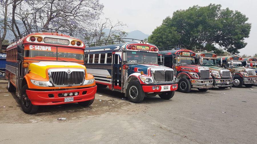 ChikenBus Bus Guatemala Bleu Sky Street Travel Destinations Travelling Red Sky School Bus Vehicle Mode Of Transport
