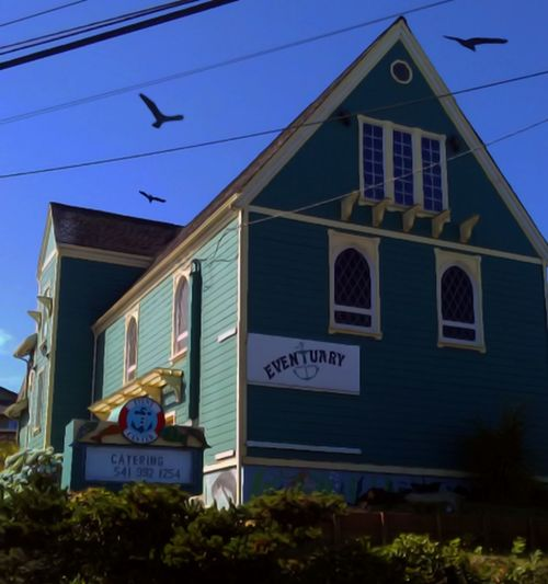 Building Exterior Text Outdoors Architecture Business Finance And Industry Built Structure No People Sky Clear Sky Day Neon Oregon Unlimited EyeEm Gallery Motion Lincoln City, Oregon EyeEm Vision Eyeemphotography Getty Images Flying Spread Wings Animal Themes Bird Animal Wildlife Animals In The Wild Something Special The Graphic City