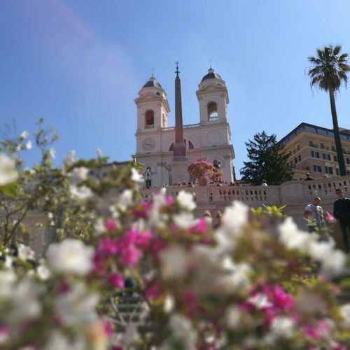 Flower Travel Destinations Place Of Worship Architecture Beautiful Rome Piazzadispagna No People Beautiful Italy🇮🇹