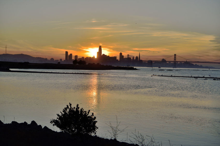 Sunset At Middle Harbor 9 Port Of Oakland, Ca Middle Harbor Sunset Sundown Sunset Silhouettes Sunset_collection San Francisco Skyline Cityscape Bay Bridge Skyscrapers Sun's Glow Reflection Reflections In The Water Reflected Glory Landscape_photography Landscape_Collection Sutro Tower Salesforce Building Estuary San Francisco Bay Silhouette Cloud - Sky Urban Skyline Architecture
