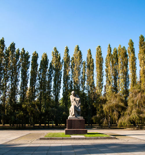 Statue and trees in park against sky