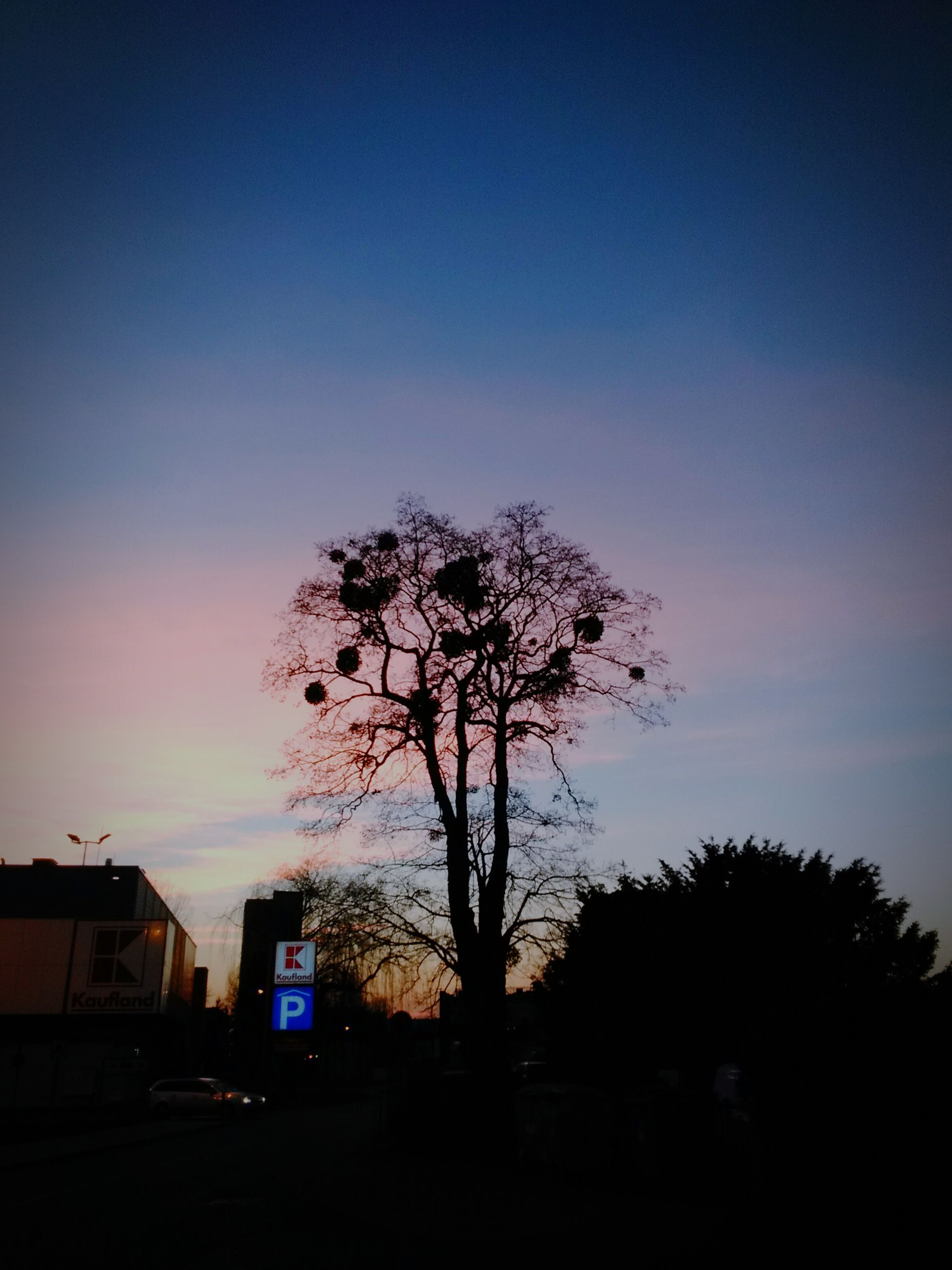 silhouette, tree, sunset, bare tree, sky, building exterior, built structure, dusk, architecture, nature, beauty in nature, tranquility, branch, scenics, tranquil scene, outdoors, house, low angle view, dark, copy space