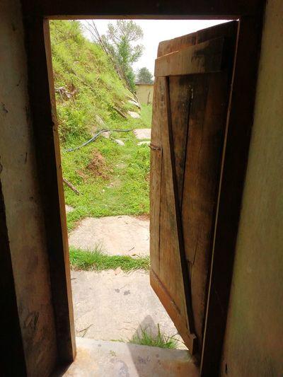 Singal Big Door