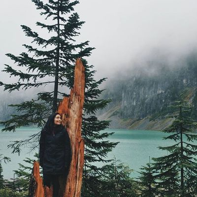 playing around on stumps after a hike in the rain || 📷: @marikojulia Vscocam Hikingpnw PNW Pnwdreaming nature hikingintherain blancalake nature rei1440project weberinthewild