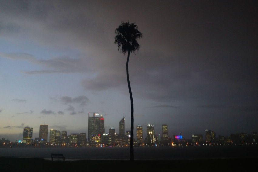 Thunder storm at dusk Architecture Building Building Exterior Built Structure City Cityscape Cloud - Sky Illuminated Modern Nature Night No People Office Building Exterior Outdoors Palm Tree Silhouette Sky Skyscraper Tall - High Thunder Storm At Dusk Tree Tropical Climate Urban Skyline The Great Outdoors - 2018 EyeEm Awards