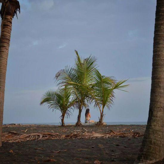 Sunset relax Beach Costarica Playahermosa Playa palms costaricagram ticos puravida getaroundcostarica beautiful pictureoftheday