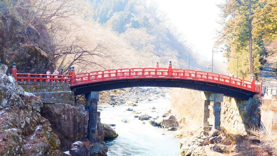 Shinkyo Connection Bridge - Man Made Structure Built Structure Architecture Transportation Tree Engineering Day No People Outdoors Nature Bridge Mountain Sky