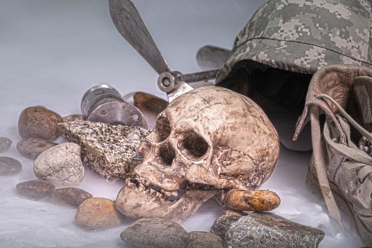 Close-up of human skull and rocks