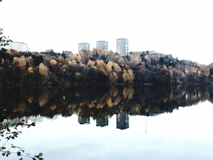 Mirror Lake Lake View From My Point Of View Nature On Your Doorstep Trekanten Gröndal Liljeholmen Stockholm