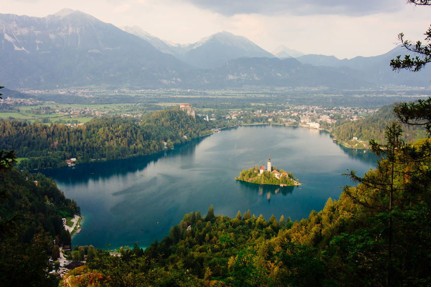 View from Osolnica overlooking lake bled with a church and the castle. Beauty In Nature Bled Castle High Angle View Hills Island On The Lake Lake Lake Bled Landscape Mountain Mountain Range Nature Outdoors Slovenia Travel Travel Destinations Water